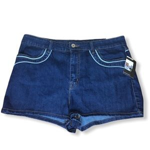 Urban Outfitters BDG High Rise Erin Shorts Size 32